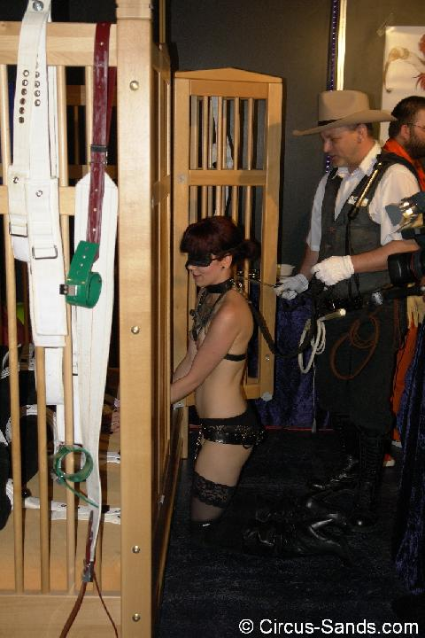 Boundcon VIII report: searching a bone